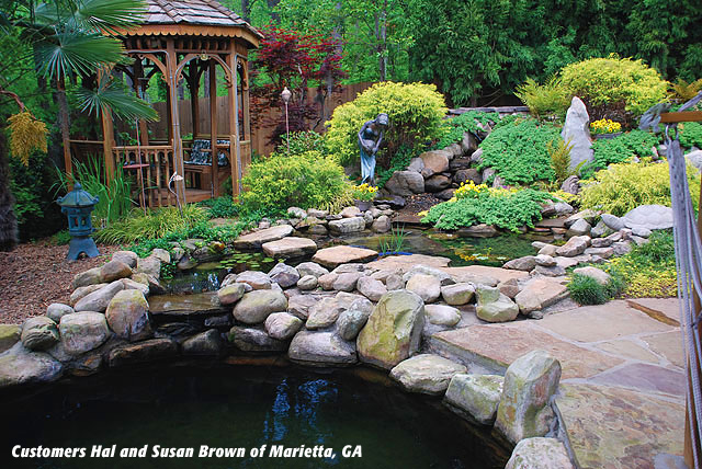 Design and installation my cms for Fish pond installers