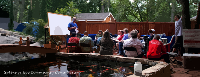 Koi Pond Consultations