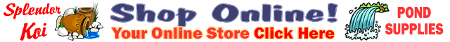 Shop For Koi Supplies